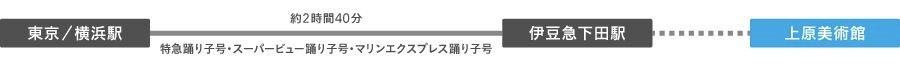 伊豆急下田駅まで直通ルート
